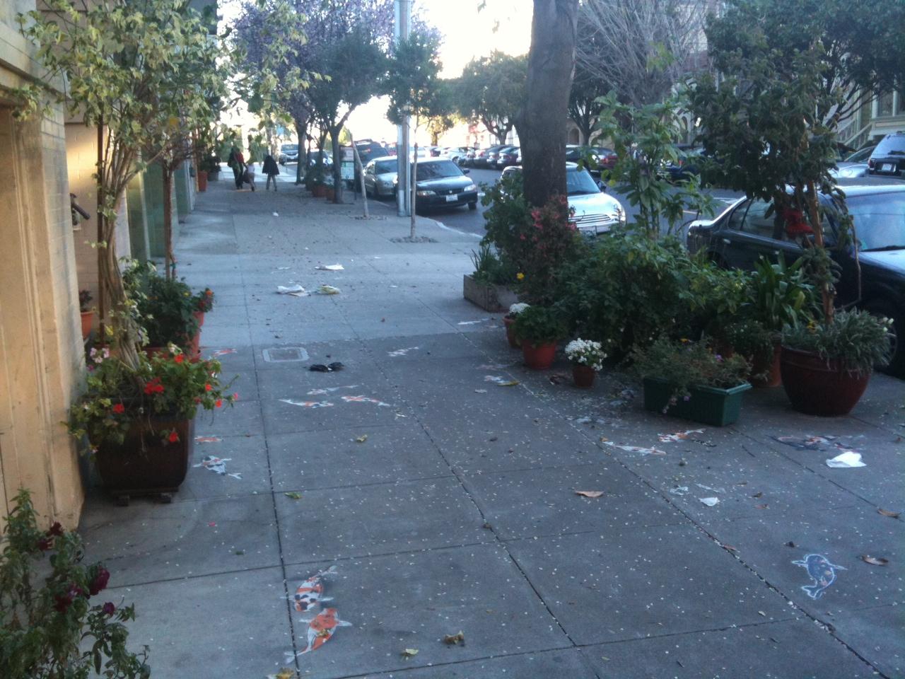 City Of San Francisco Upset Over Harmless Sidewalk Garden